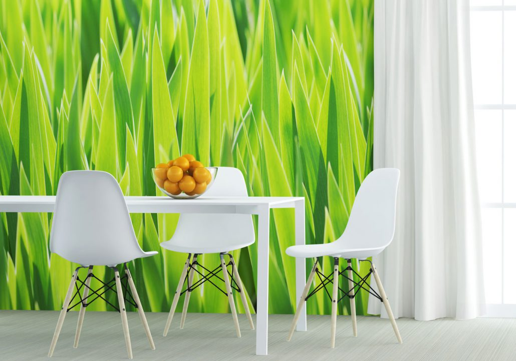 malerarbeiten vom malermeister aus dem m hlviertel. Black Bedroom Furniture Sets. Home Design Ideas